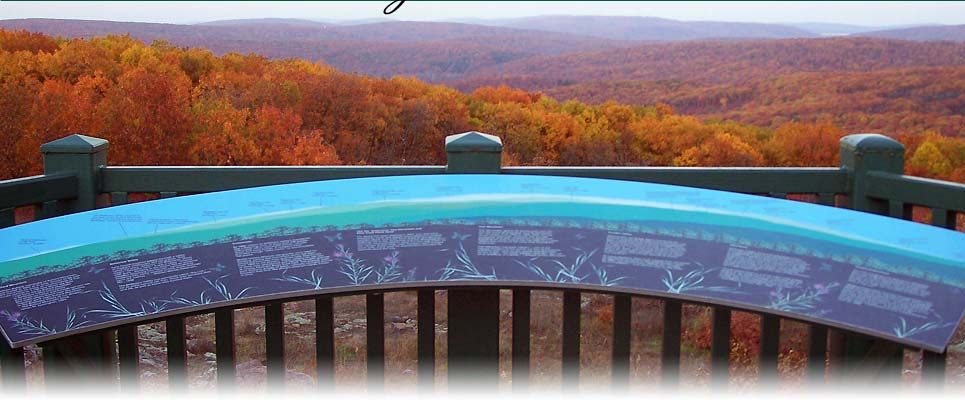 Lodging Near Taum Sauk Mountain State Park - Plain & Fancy - Missouri Bed and Breakfast